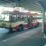 puplic-bus1